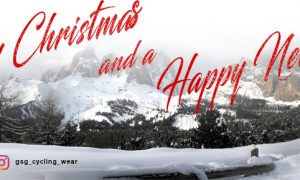 Merry Christmasand aHappy New Year