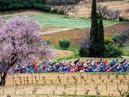 I vincitori della maglie del Tour de la Provence 2021